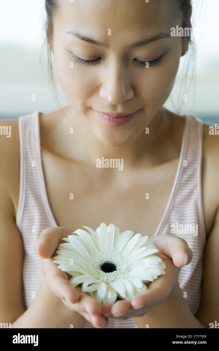 Young woman holding gerbera daisy, portrait Stock Photo