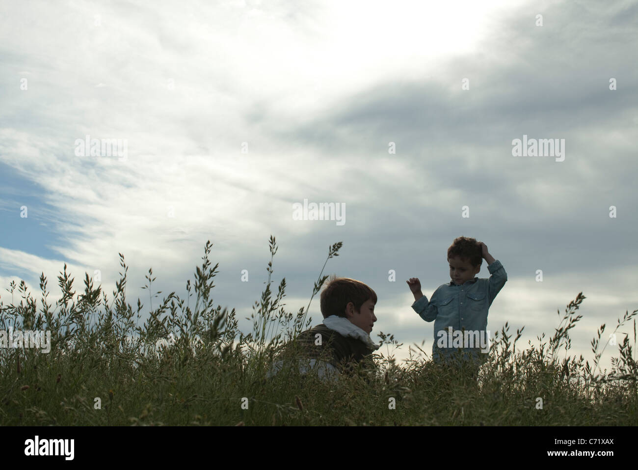Boys in meadow - Stock Image