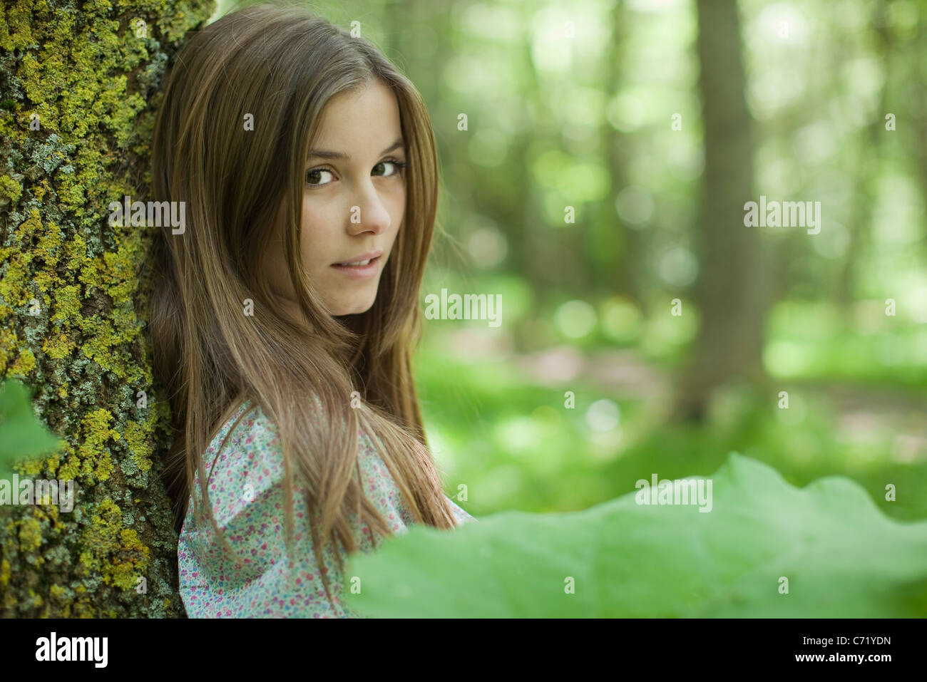 Young woman leaning against tree in woods - Stock Image