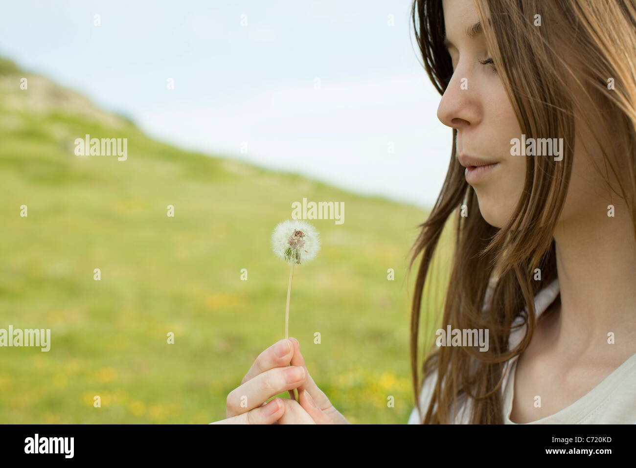 Young woman blowing on dandelion clock - Stock Image