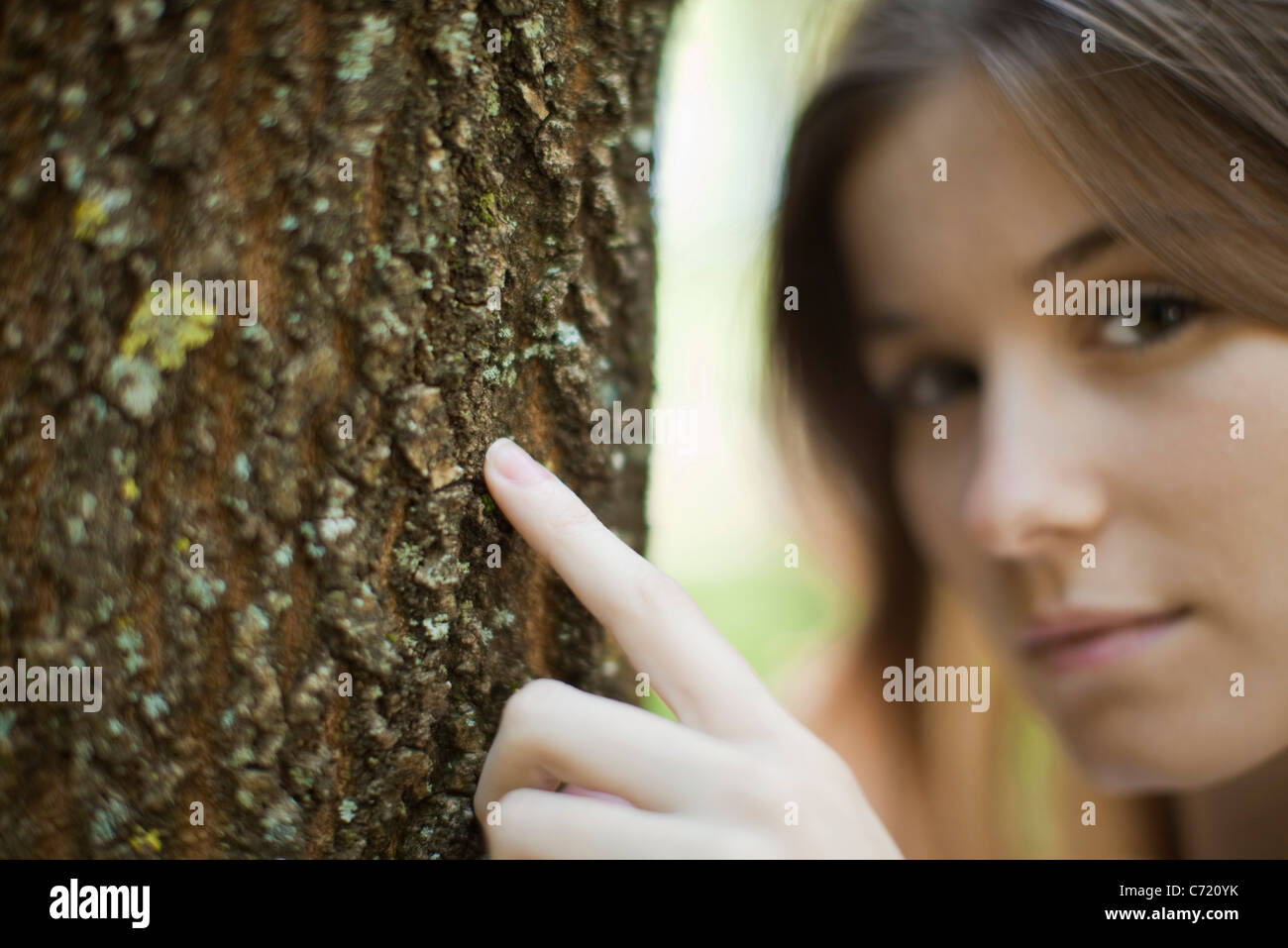 Young woman's finger touching tree trunk, cropped - Stock Image