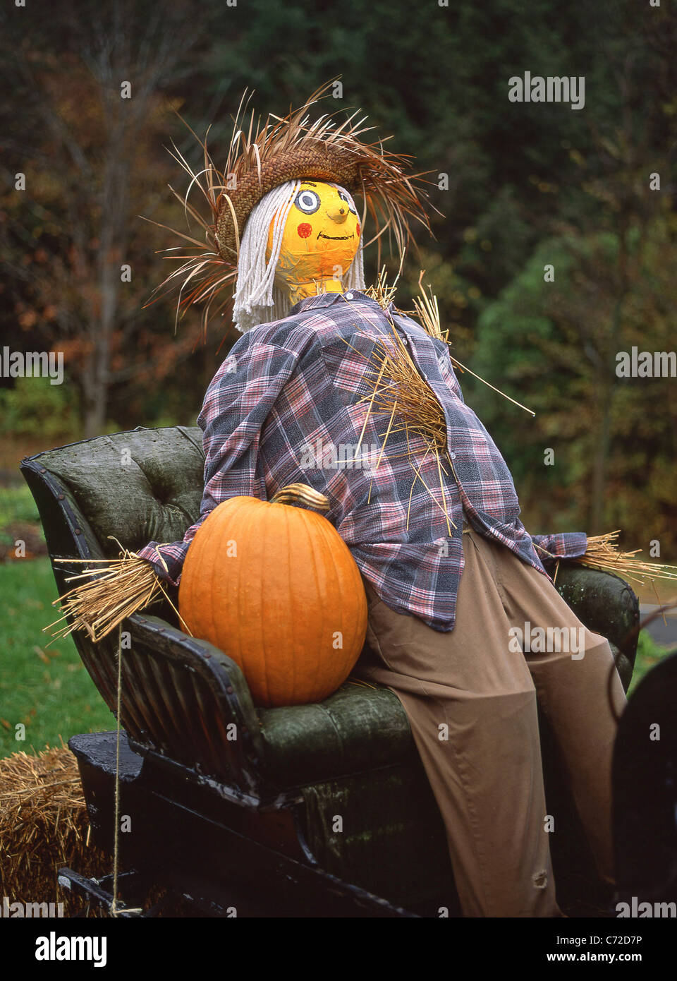 Roadside carriage with pumpkin and scarecrow, Connecticut, United States of America - Stock Image