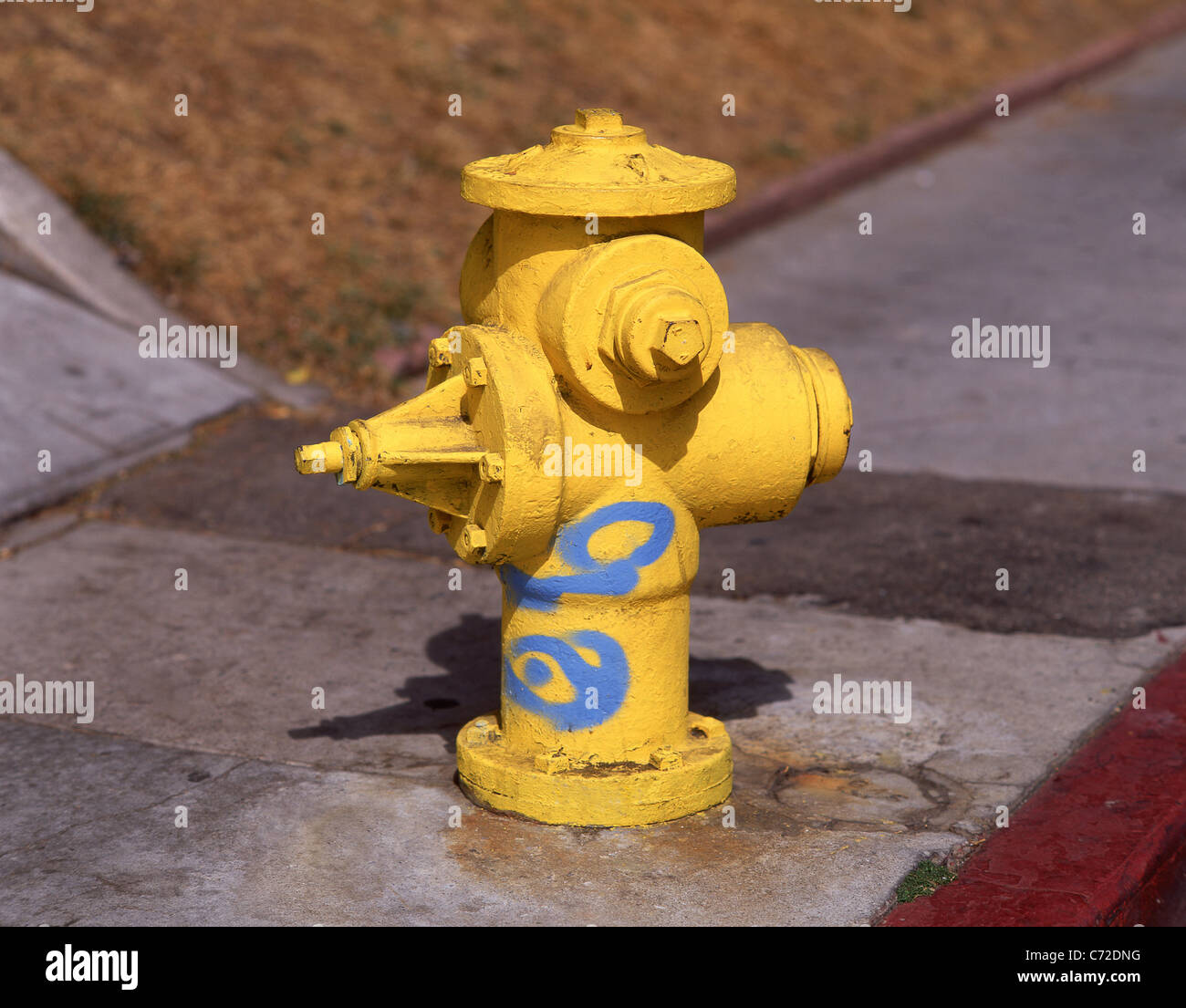 Yellow fire hydrant on sidewalk, San Francisco, California, United States of America - Stock Image