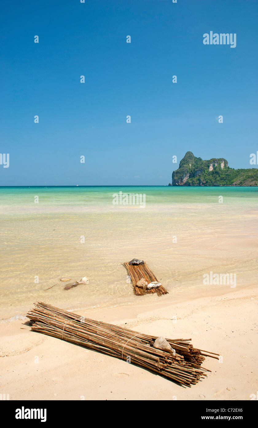 tropical beach in ko phi phi thailand - Stock Image
