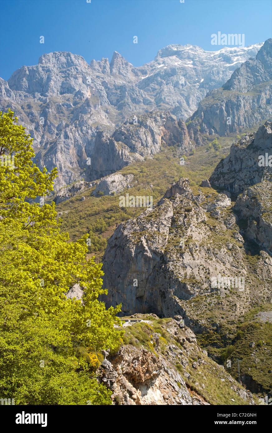 The Picos de Europa, Castilla y Leon, Spain - Stock Image