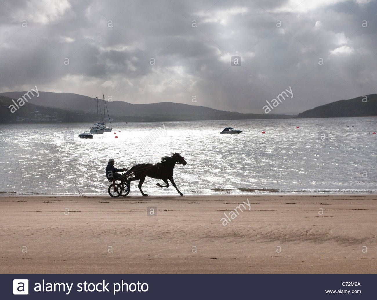 A sulky pulled by a race horse on the beach at Rathmullan, Co. Donegal, ireland - Stock Image