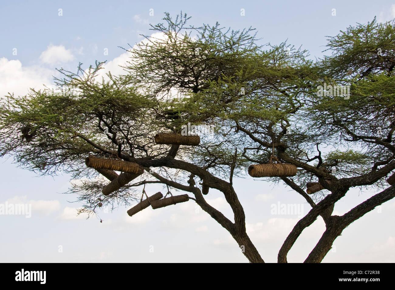 Hives, Arba Minch, Ethiopia Stock Photo