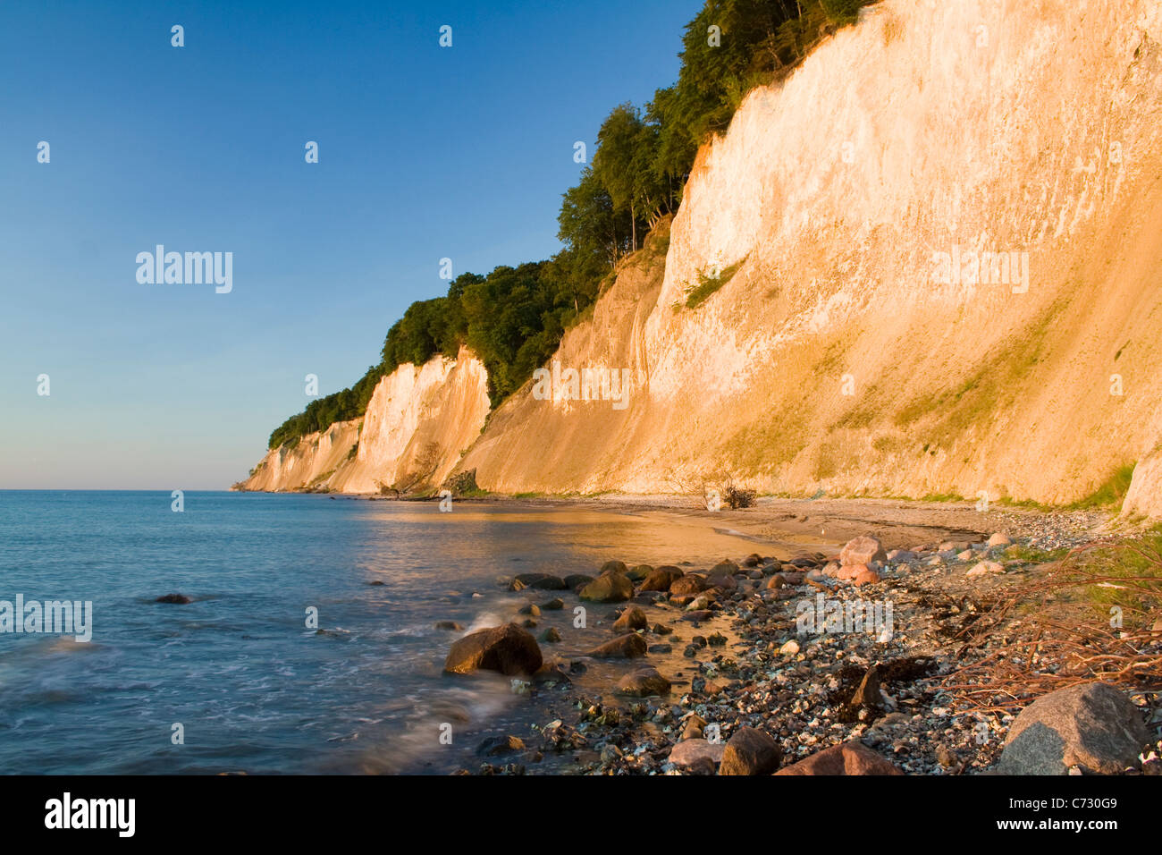 Chalk cliffs at sunrise in the Jasmund National Park, Ruegen Island, Mecklenburg-Western Pomerania, Germany, Europe Stock Photo