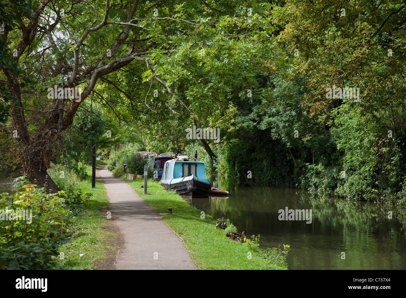 Path alongside the Oxford Canal near the city centre, Oxford, Oxfordshire, England, UK - Stock Image