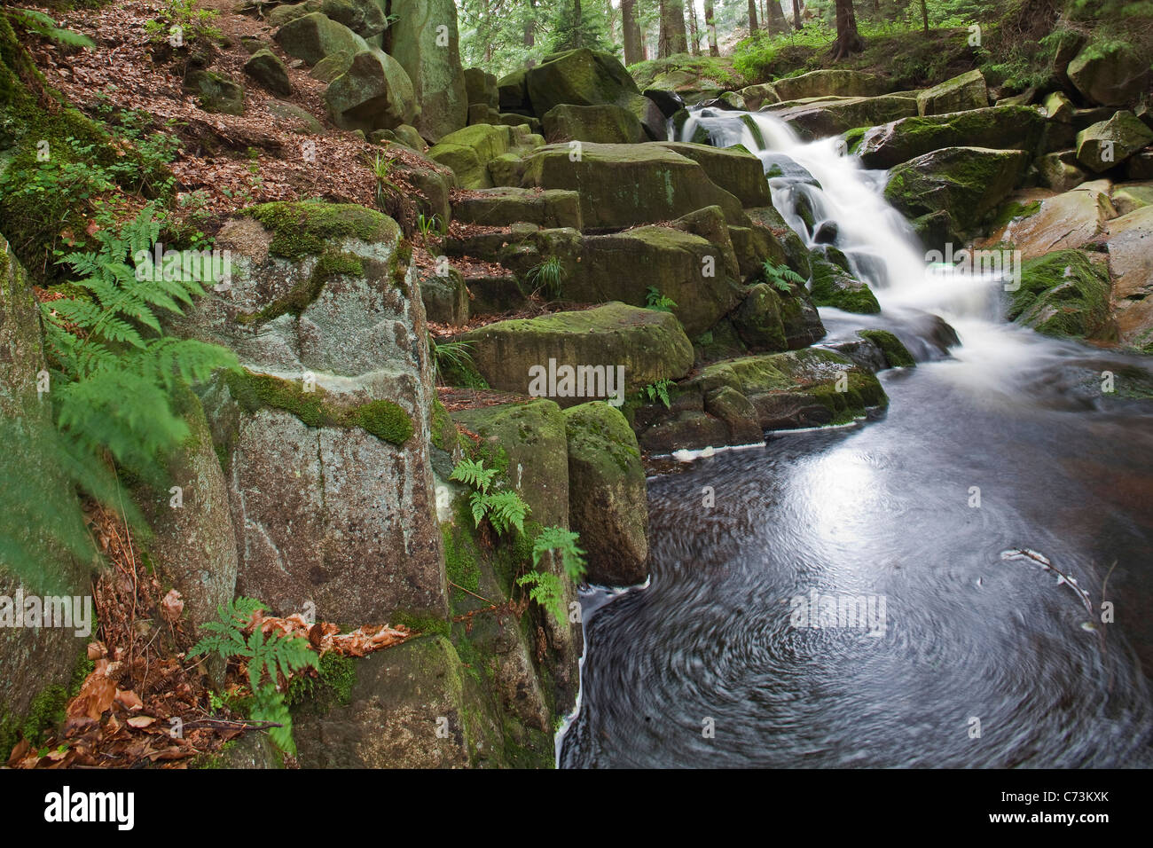 Waterfalls, Ilse mountain stream flowing over mossy rocks, Heinrich Heine walking trail, Harz Mountains, Saxony Stock Photo