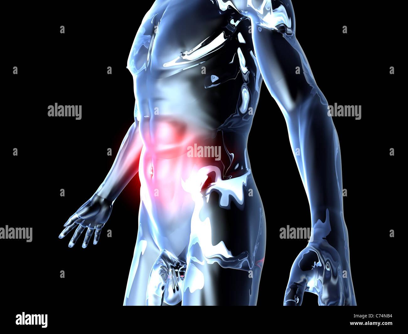 Anatomy - Belly Ache Stock Photo: 38827912 - Alamy