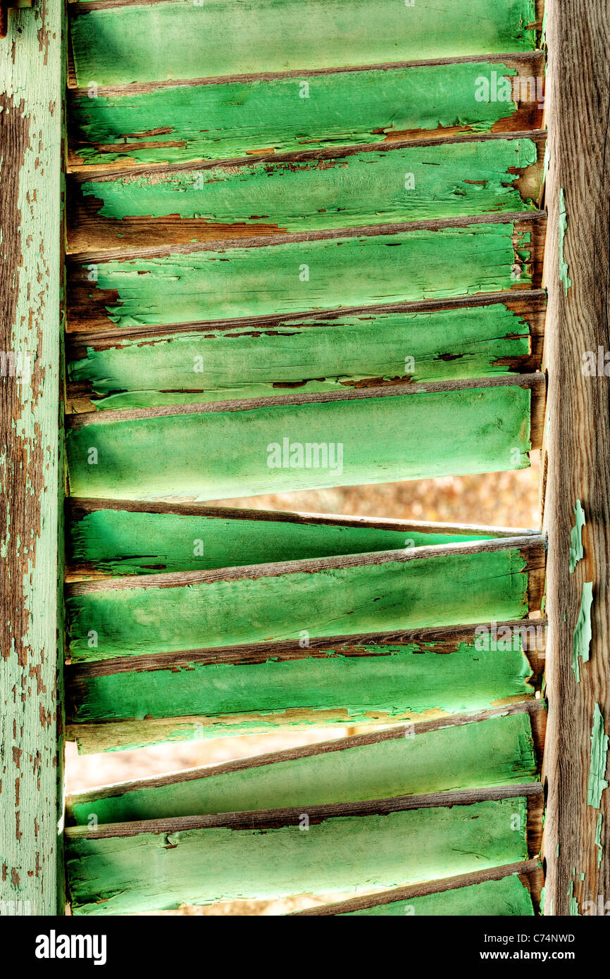 Old Green Ruined Wooden Shutter - Stock Image