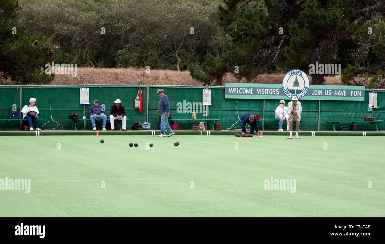 Lawn Bowls Artificial Turf - Stock Image