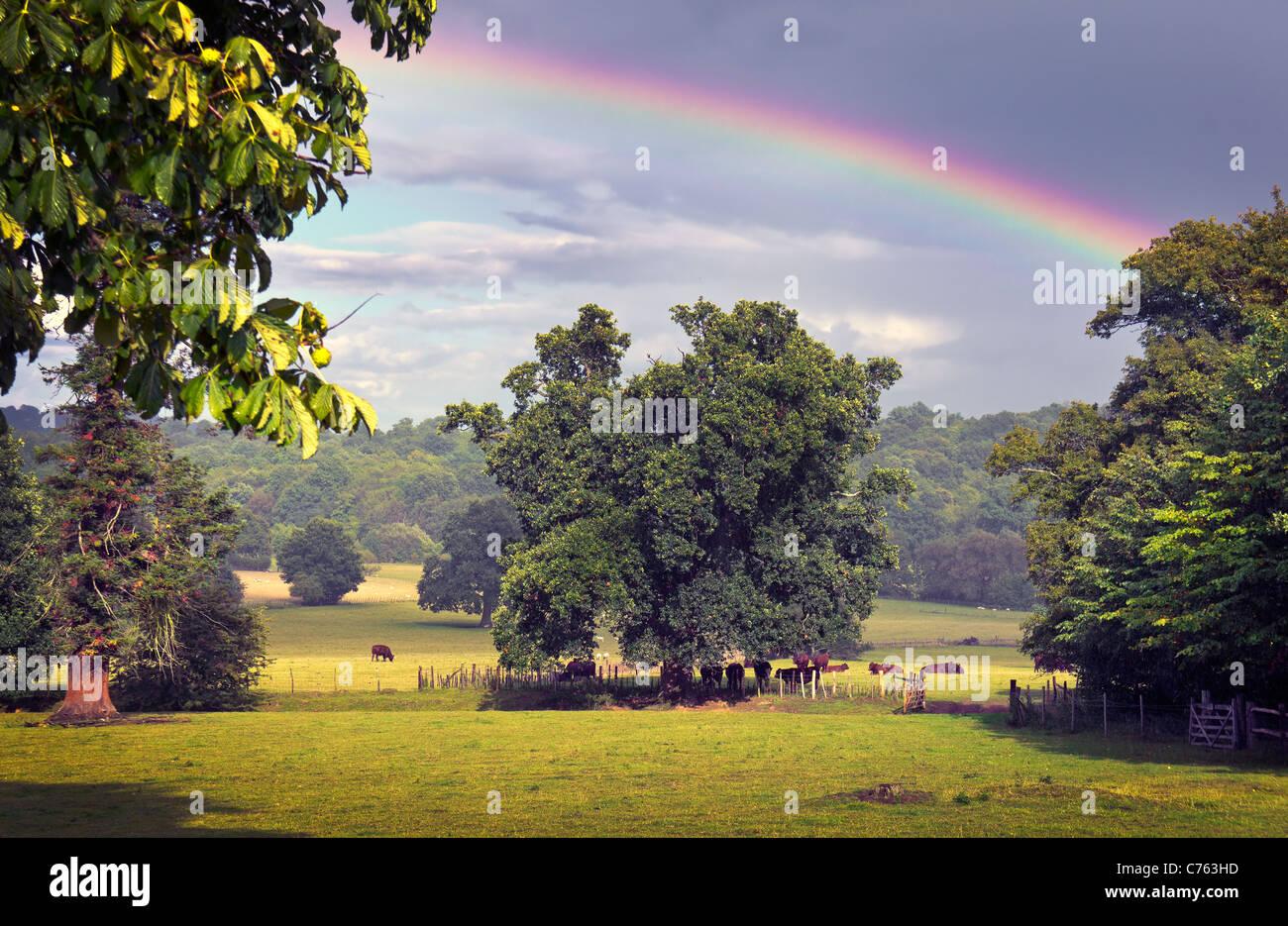 English countryside with rainbow - Stock Image