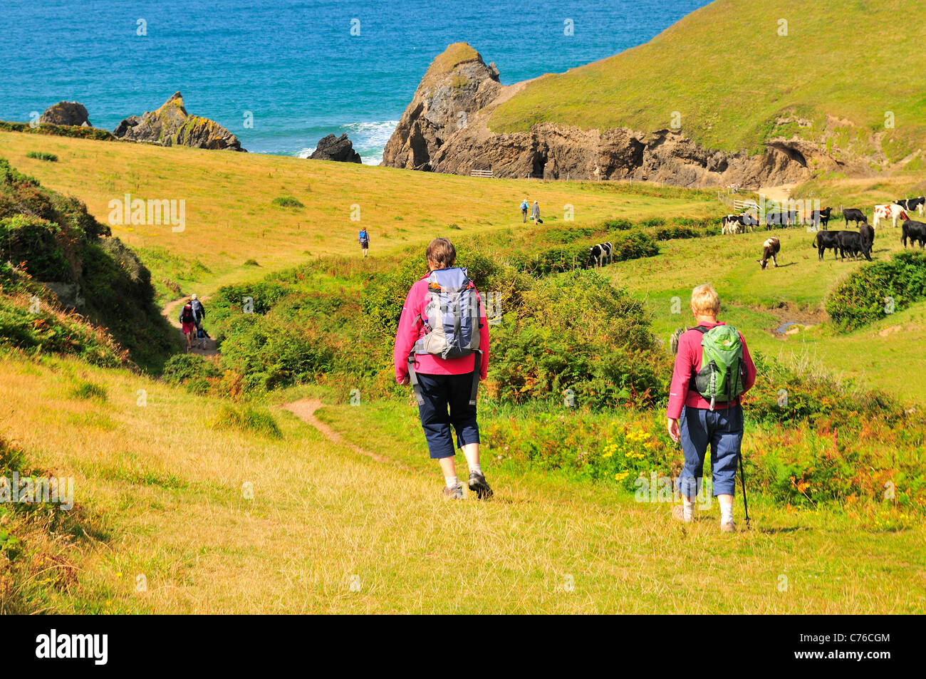Ramblers at Soar Cove near Salcombe on the southwest coastal path - Stock Image
