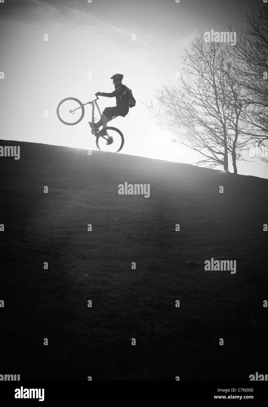 Mountain biker puling a wheelie / manual in sunset black and white - Stock Image