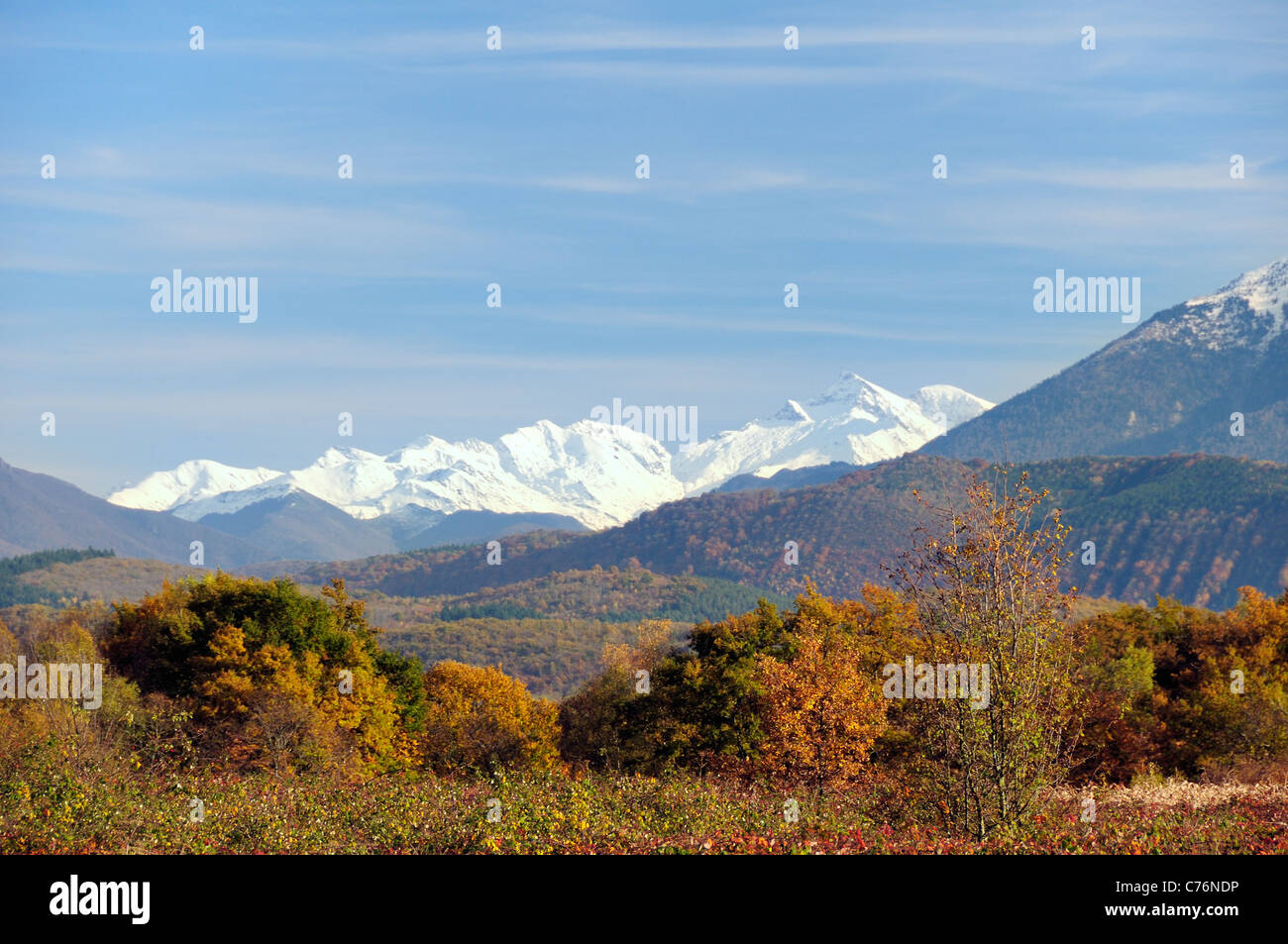 Distant view of snow topped Pyrenees mountain chain with autumnal bushes and trees in the foreground, Gascony, France, Stock Photo