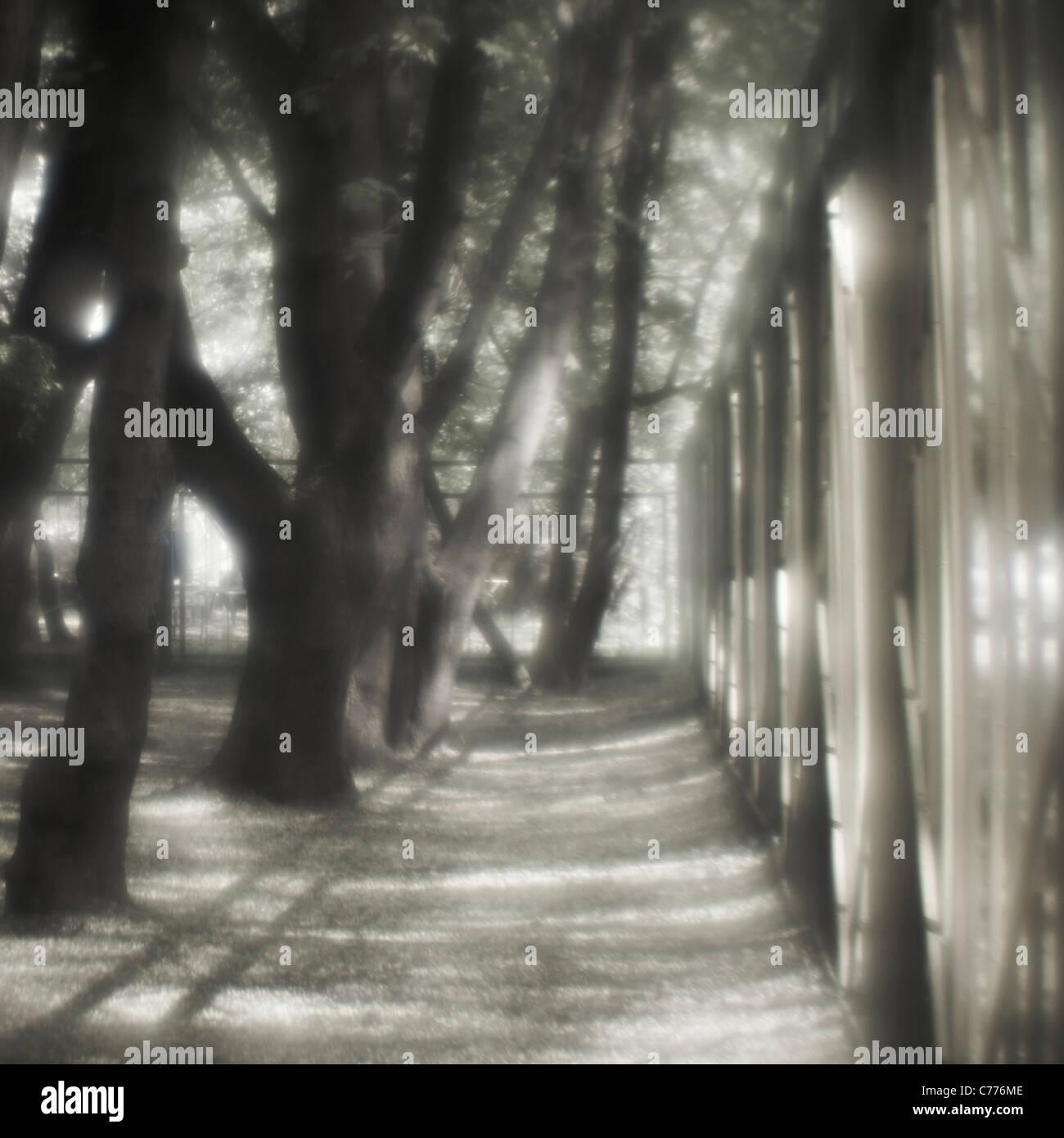 Geometry - light and shadow Stock Photo