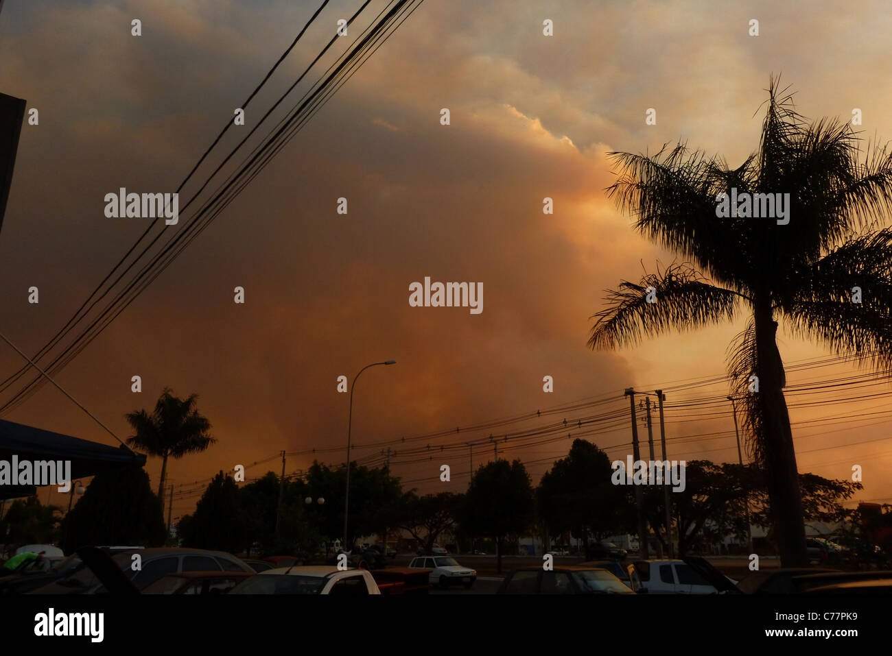 Smoke Cloud, Fire  Burning in the Botanic Garden, blocks the sun, Brasilia, Brazil - Stock Image