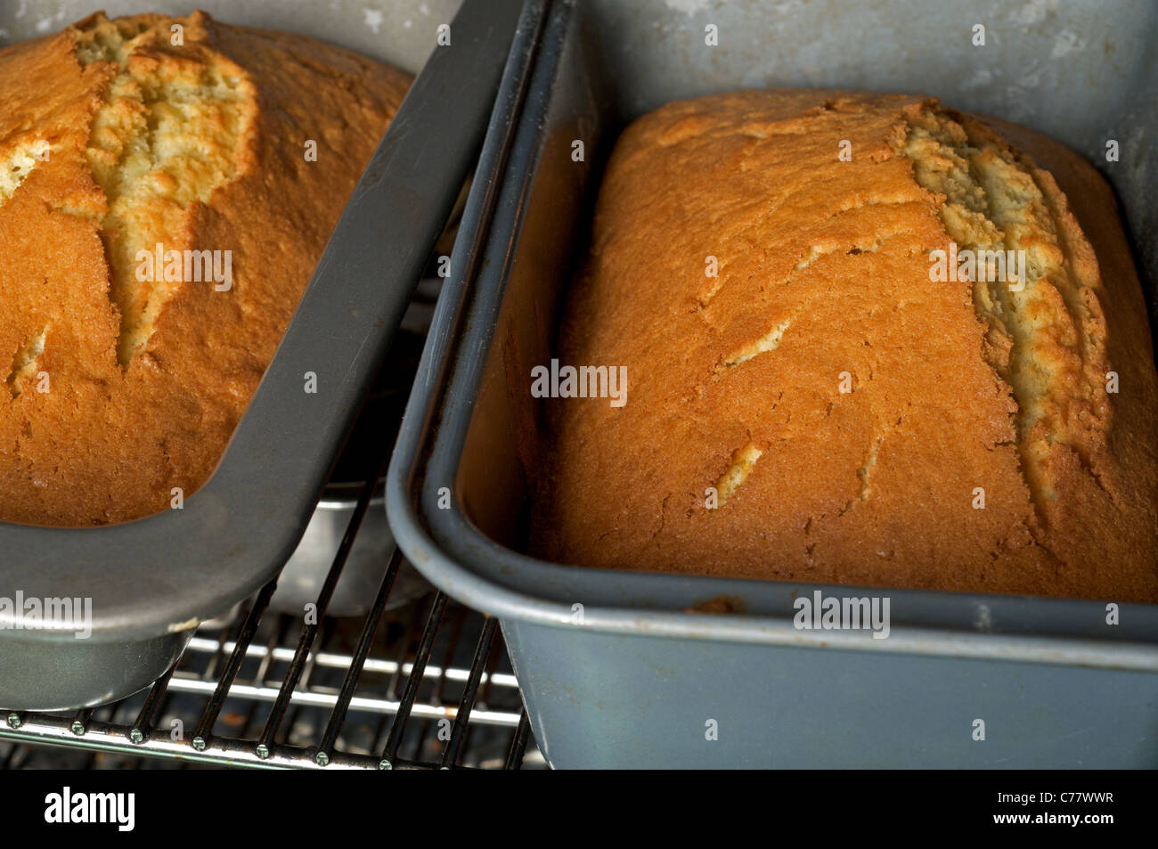 Homemade cakes baked in oven - Stock Image