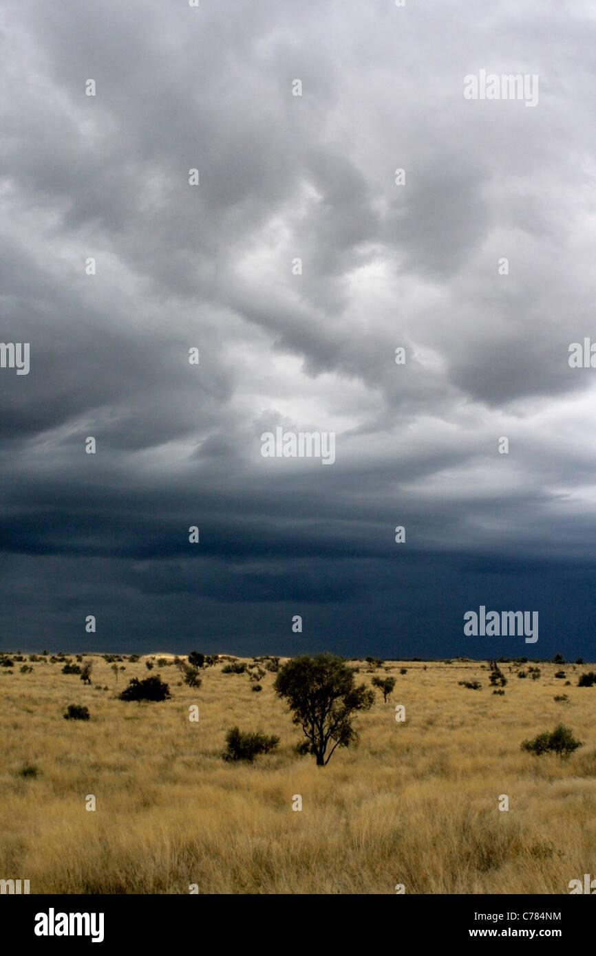 Storm over the Kalahari Desert, South Africa - Stock Image