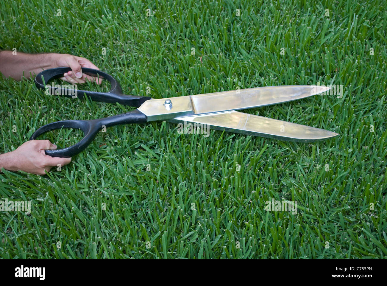 giant scissors cutting grass - Stock Image