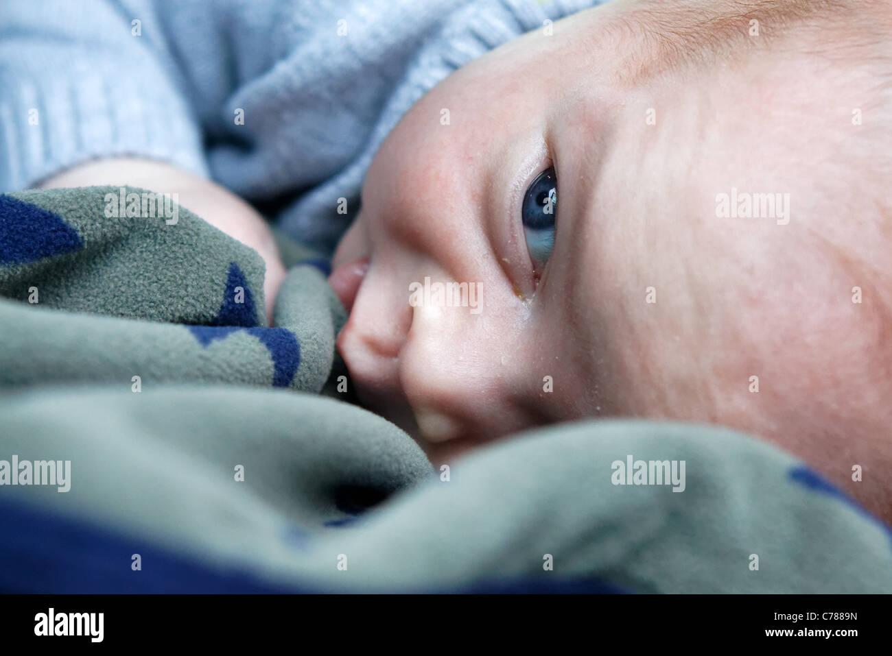 Blue-eyed infant - Stock Image