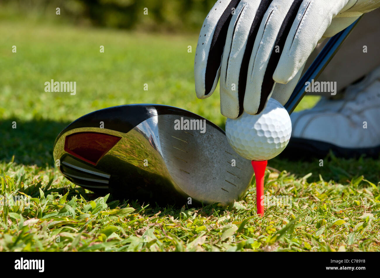 Hand placing a golf ball on a tee, next to a club. - Stock Image