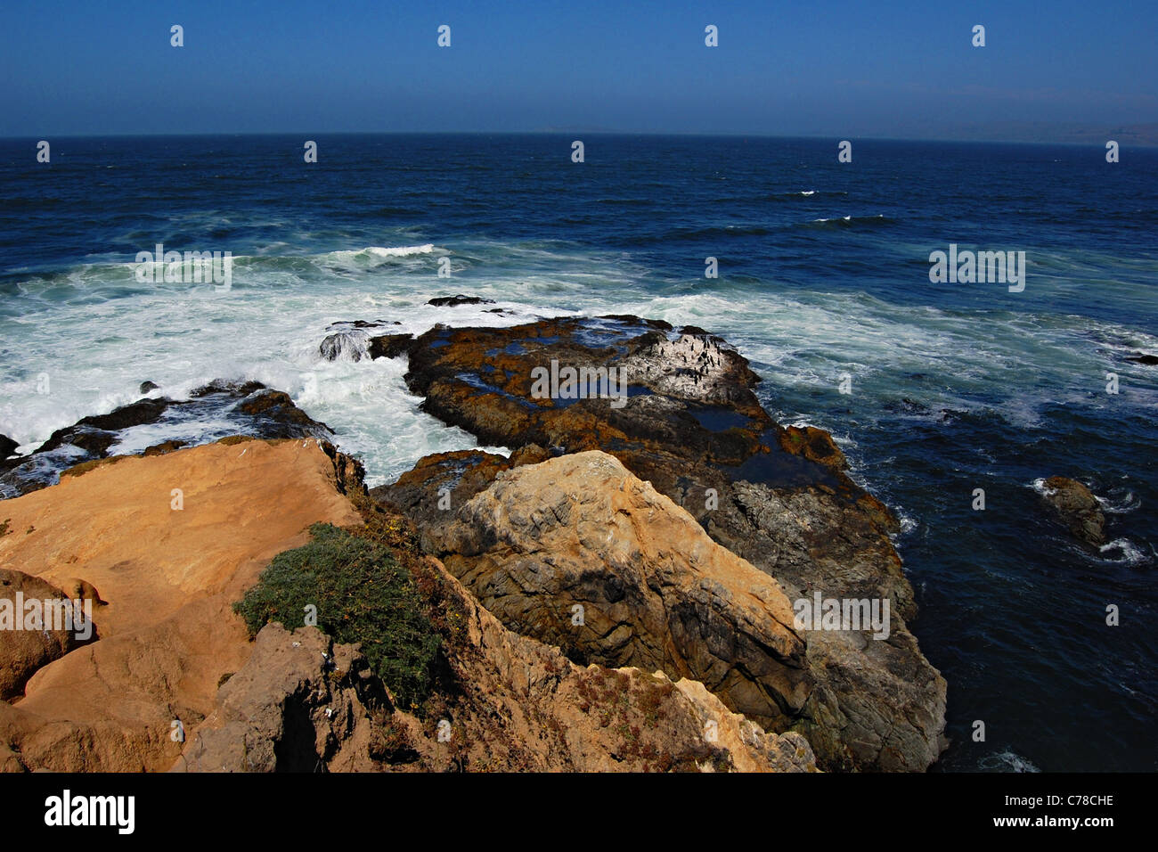 Tomales Point, Point Reyes National Seashore, California - Stock Image