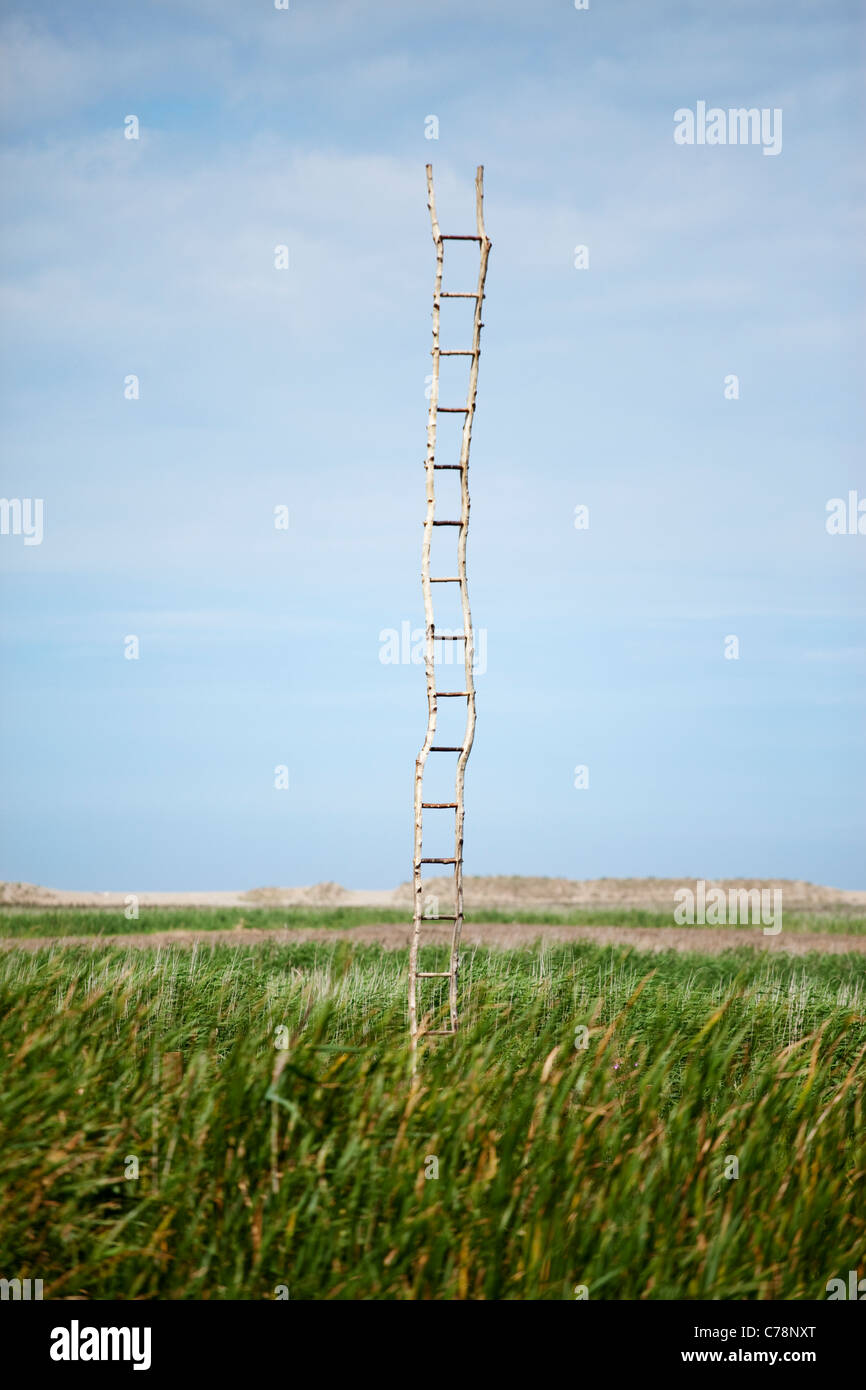 A wooden ladder in the middle of scrub land at Cley-Next-The-Sea in Norfolk, UK - Stock Image