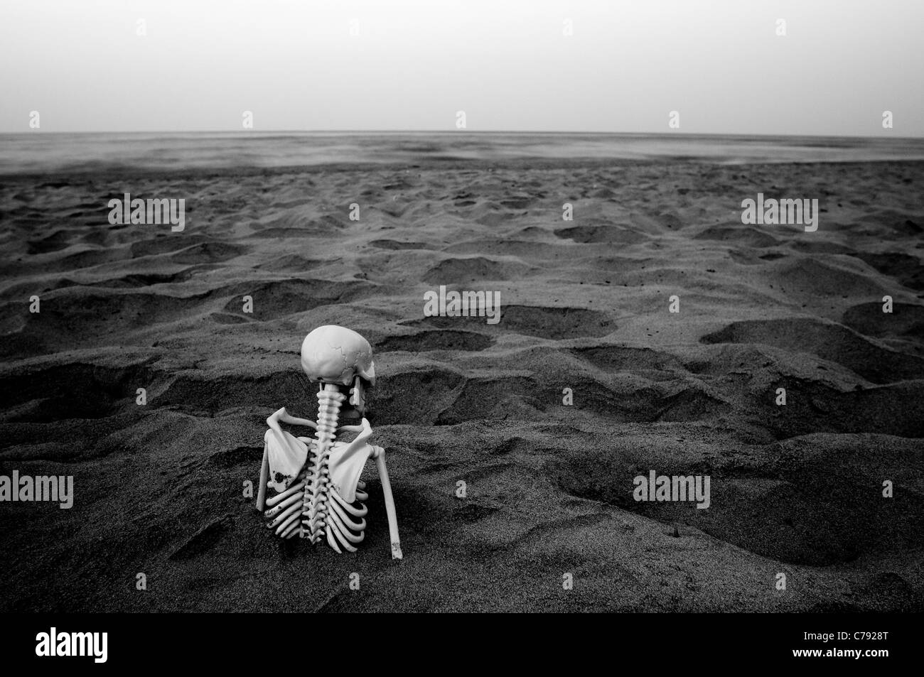 Skeleton trapped in the sand - Stock Image