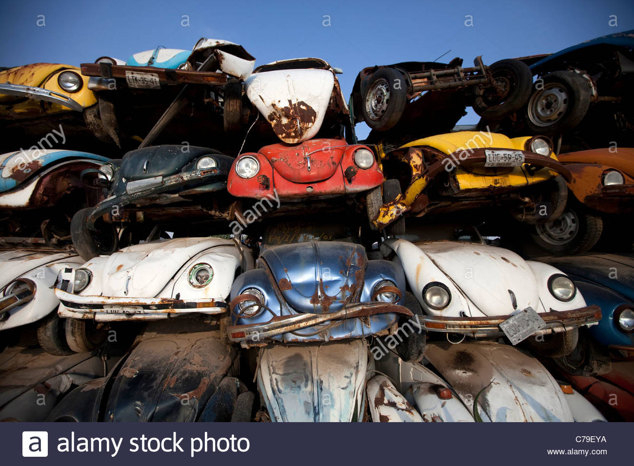 "Old Volkswagen car ""VW beetle"" seized by the government in a ..."