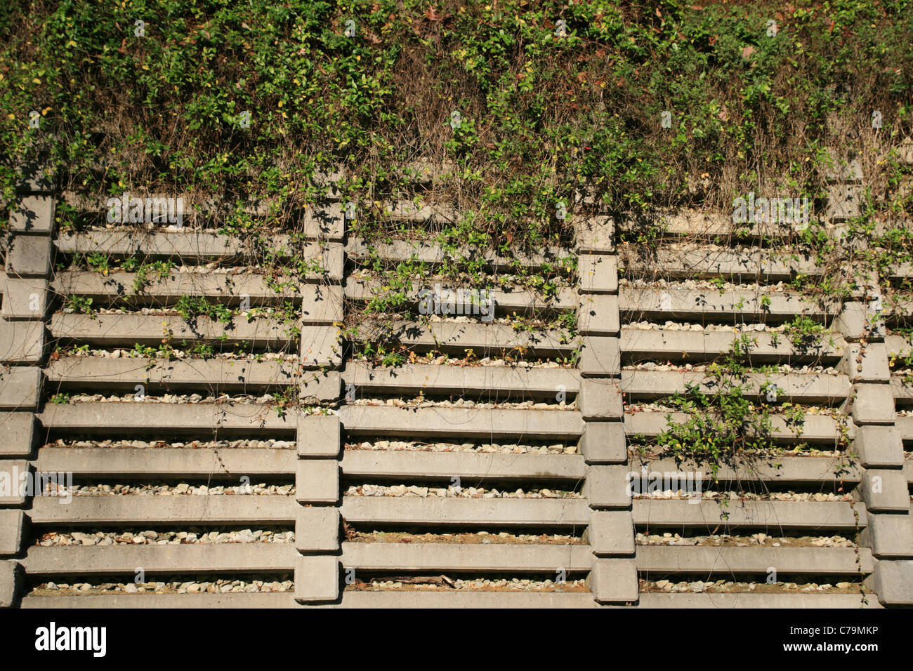 concrete crib retaining wall with vines on the top half - Stock Image