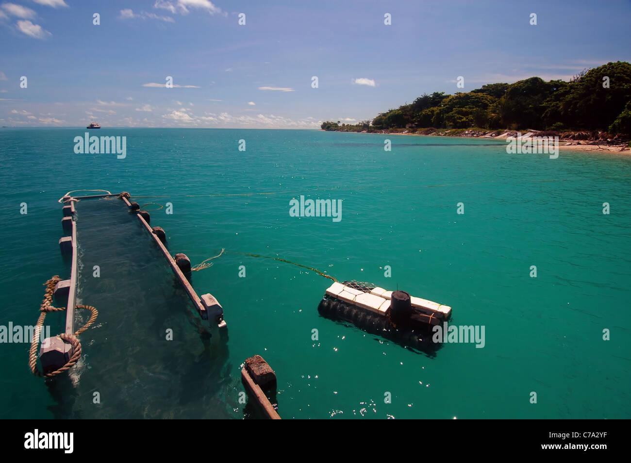 Jetty underwater during king tide at Poruma Island (aka Coconut Stock Photo: 38945187 - Alamy