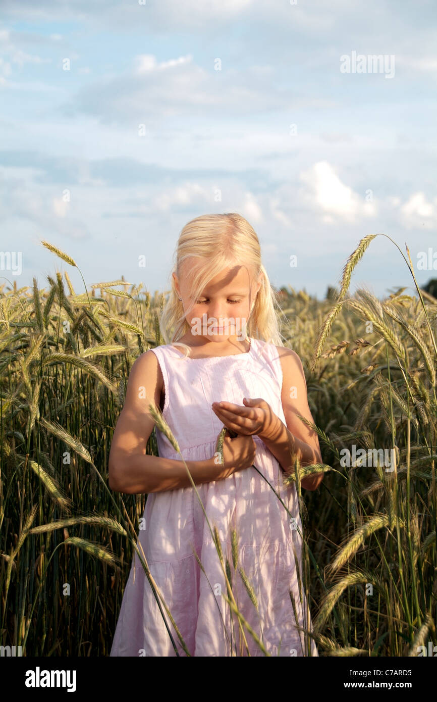 Girl, 6 years old, wearing a dress in a wheat field in summer, Eyendorf, Lower Saxony, Germany, Europe - Stock Image