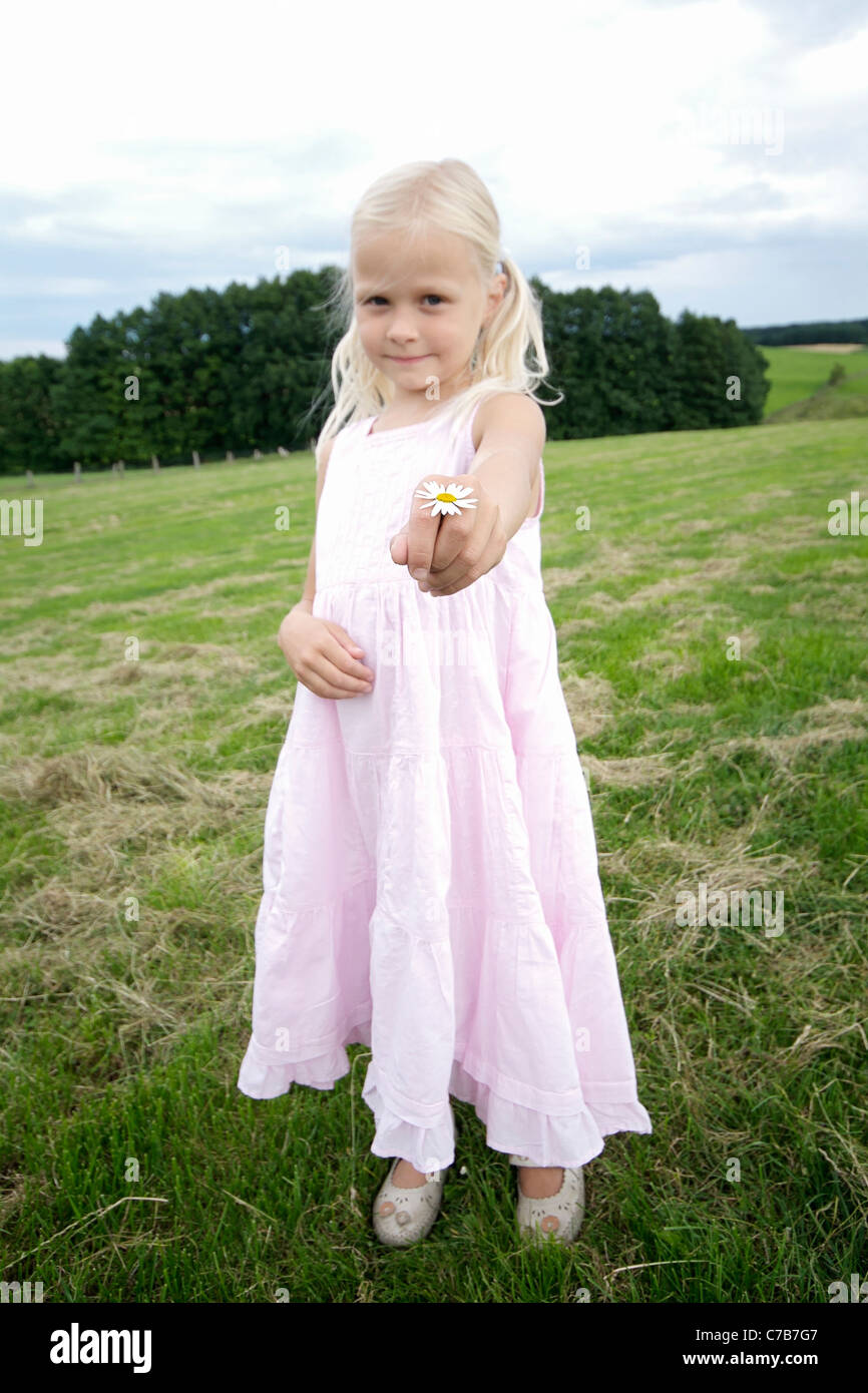 Girl holding a flower towards the viewer in summer, Eyendorf, Lower Saxony, Germany, Europe - Stock Image