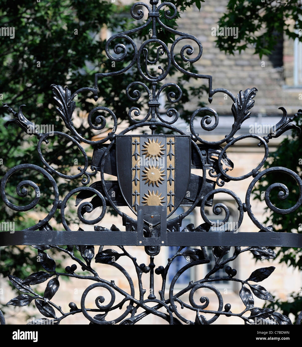 Yale University Pierson Residential wrought iron gate detail - Stock Image
