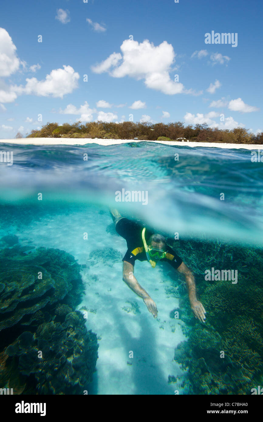 Diver in front of Wilson Island part of the Capricornia Cays National Park Great Barrier Reef Marine Park UNESCO - Stock Image