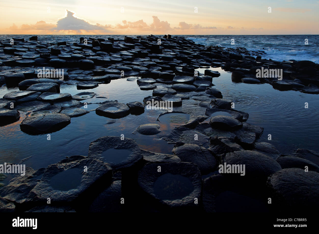 Partially submerged basalt columns at Giant's Causeway near sunset, County Antrim, Northern Ireland, United - Stock Image