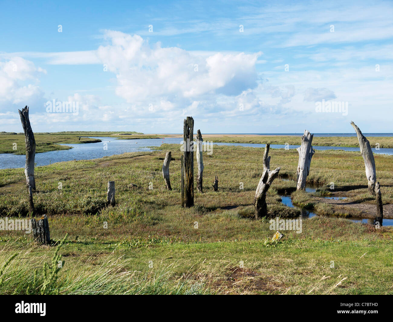 Old timbers at the mouth of Thornham Creek at high tide part of the Holme Nature Reserve Norfolk - Stock Image