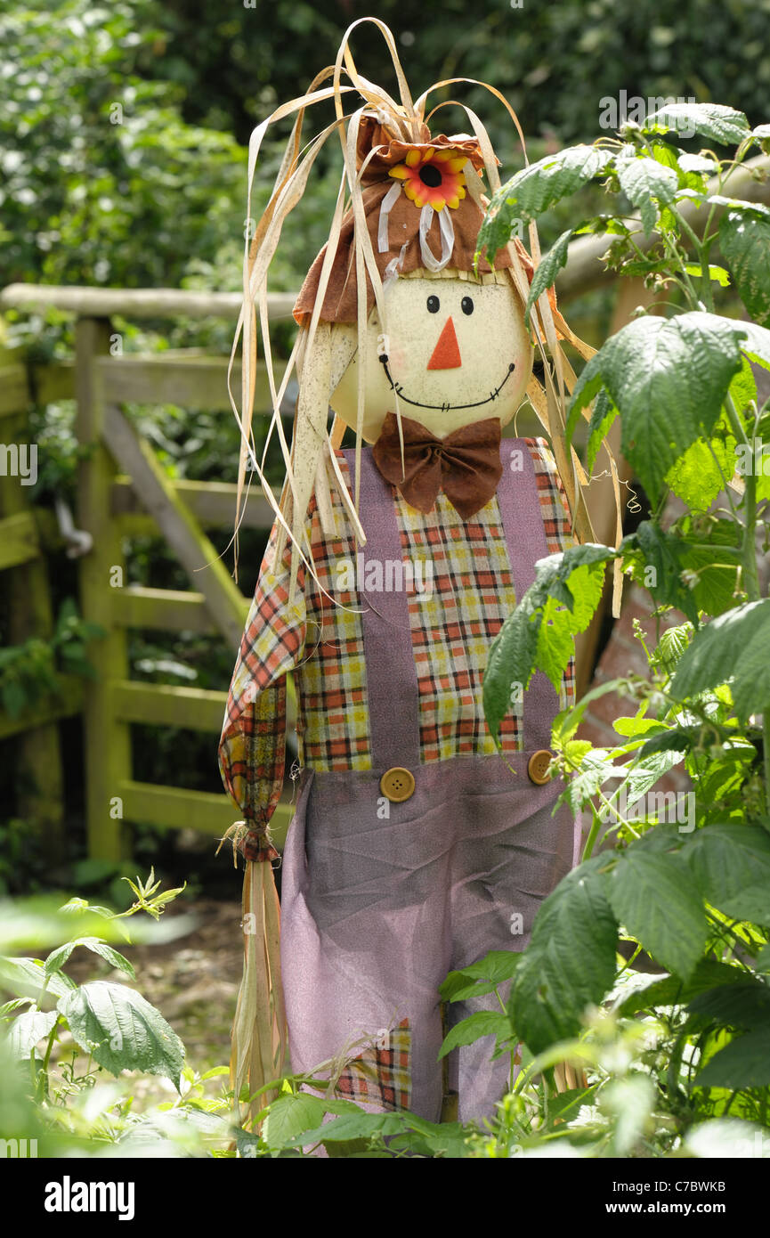 male, man scarecrow sold for use on allotments, vegetable and fruit gardens - Stock Image