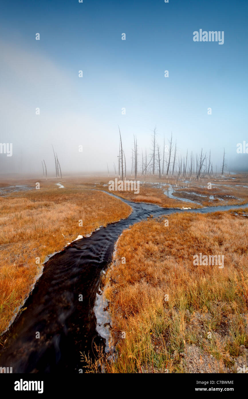 Thermal spring meandering through an autumn colored meadow, Firehole Lake Drive, Yellowstone National Park, Wyoming, - Stock Image