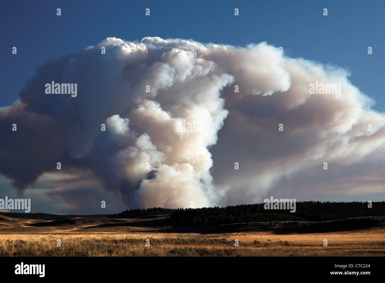 Smoke and flames of forest fire burning on Central Plateau at sunset as viewed from Hayden Valley, Yellowstone National - Stock Image