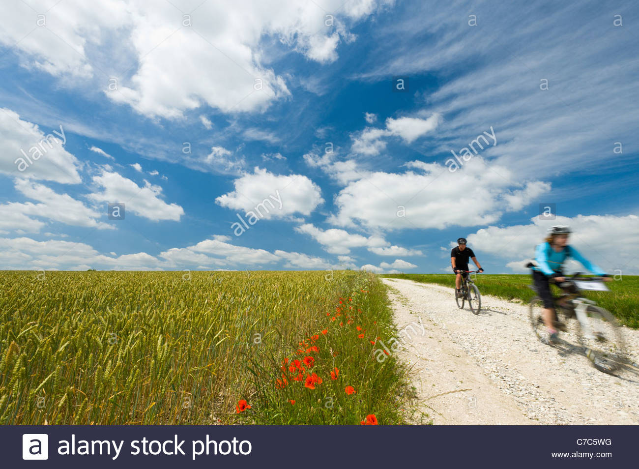 Cyclists on the South Downs Way, Sussex, England. - Stock Image