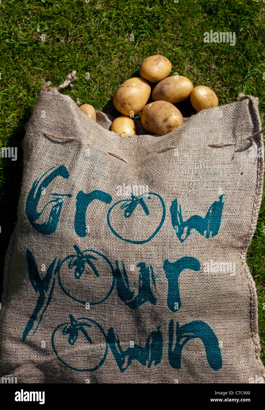 Home Grown potatoes in hessian sack with Grow Your Own printed on it Stock Photo