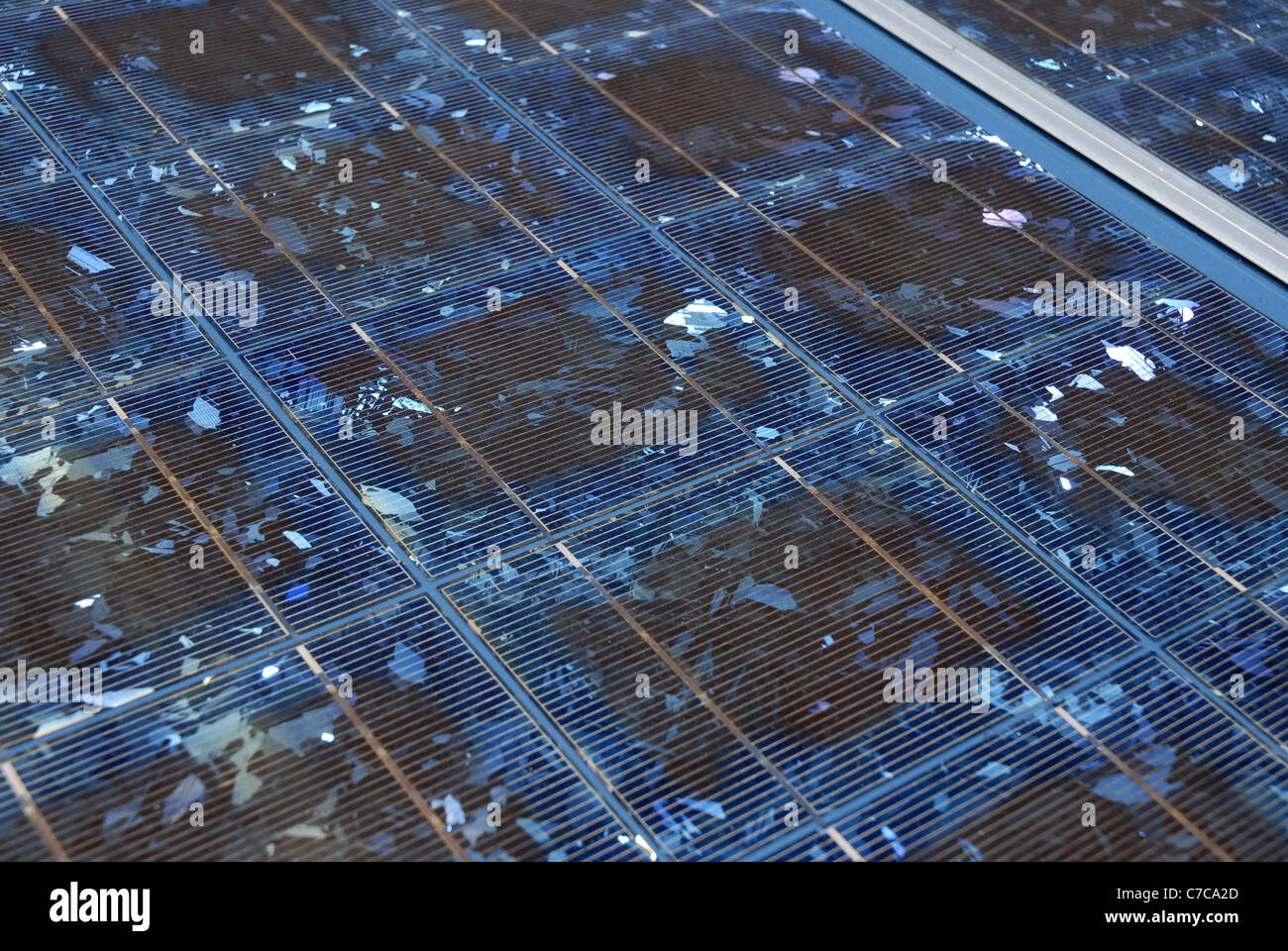Solar PV panels, close-up, installed in a rural property in the outback, Queensland,  Australia., - Stock Image