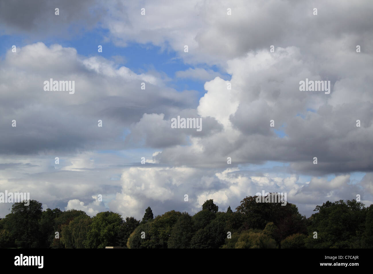 Skyline over treetops, surreal clouds of different densities and shades in an unpredictable sky - Stock Image