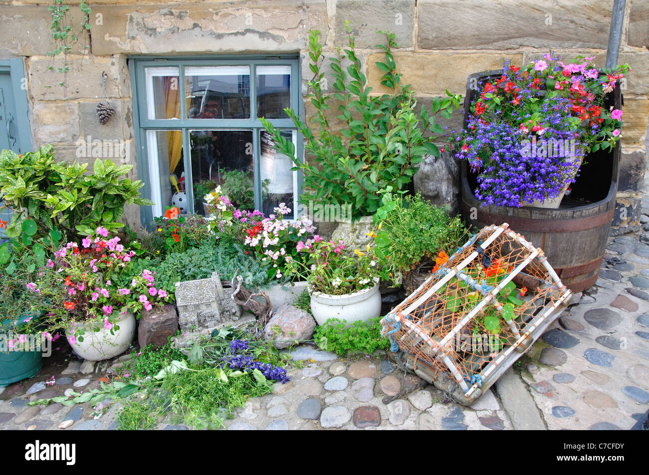 flowers and potted plants outside a cottage, Robin Hood's Bay, North Yorkshire, England, UK - Stock Image