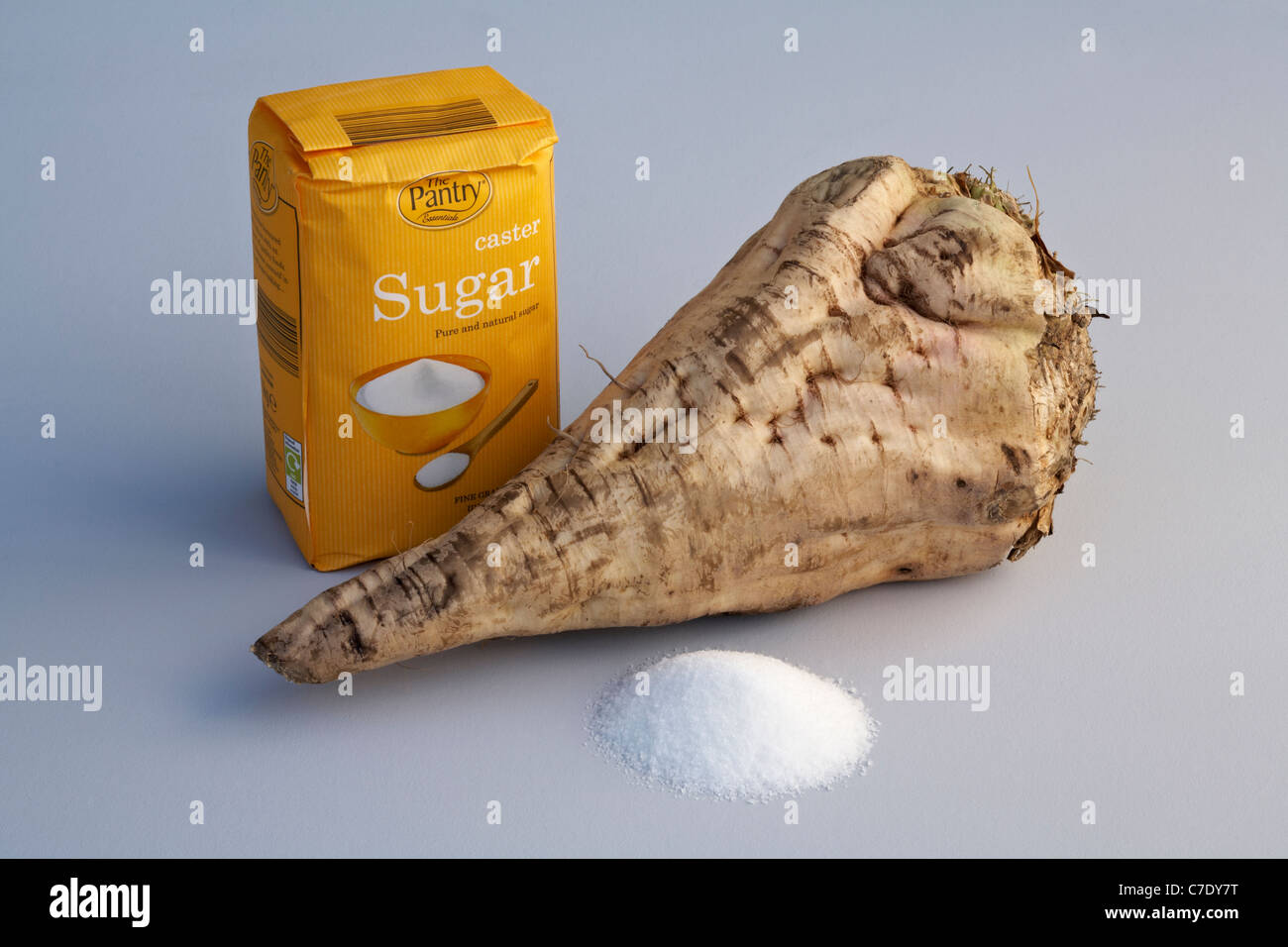 Sugar Beet Tuber with bag of Caster Sugar and pile of granulated sugar foreground - Stock Image
