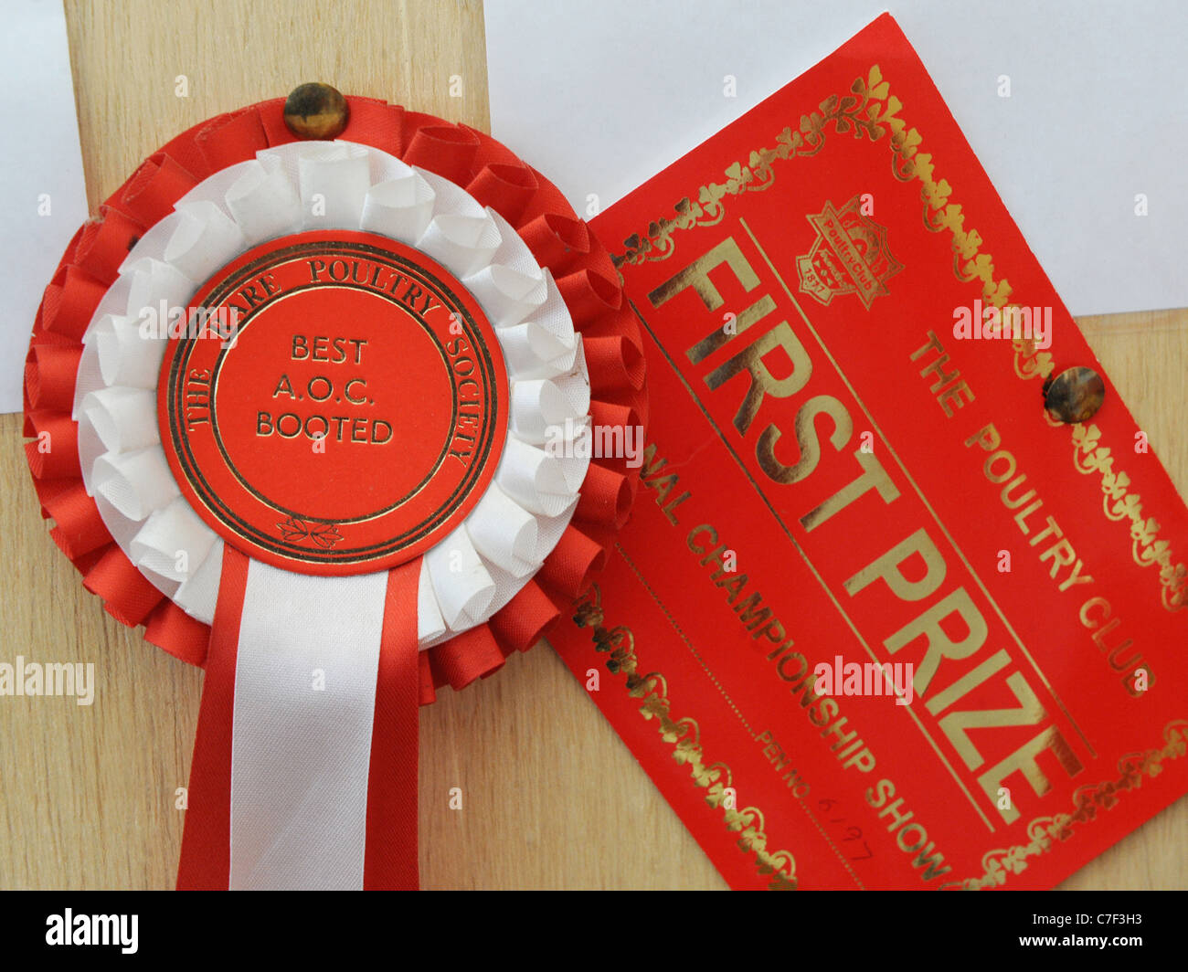 A certificate and rosette from the rare poultry society - Stock Image